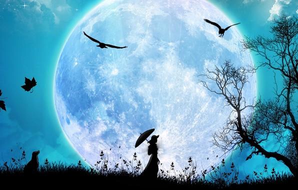 Картинка трава, птицы, ночь, grass, прогулка, силуэты, night, birds, walk, fantasy art, silhouettes, falling leaves, дама …