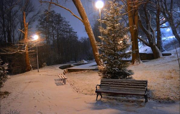 Картинка Зима, Ночь, Снег, Фонари, Парк, Winter, Night, Park, Snow, Скамейки