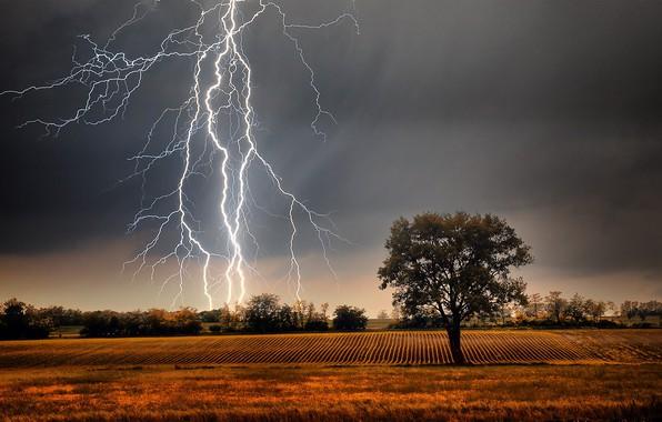 Картинка grass, storm, field, landscape, Lightning, nature, clouds, tree, plants, farm