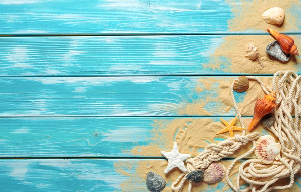 Картинка песок, пляж, ракушки, beach, wood, sand, marine, still life, seashells
