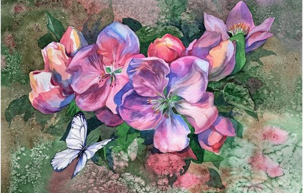 Картинка цветы, фон, бабочка, картина, акварель, живопись, яблоневый цвет, рисунок акварелью, размытие красок
