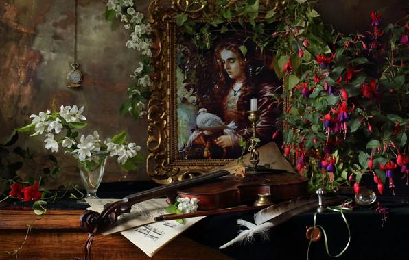 Картинка ветки, ноты, перо, скрипка, часы, бокал, картина, цветки, жасмин, фуксия, Андрей Морозов