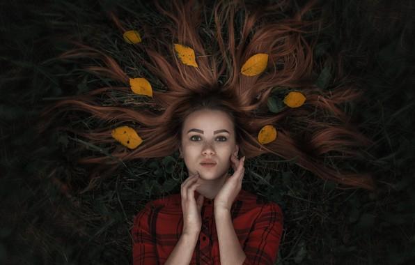 Картинка трава, листья, волосы, Девушка, лежит, Александр Тишкевич