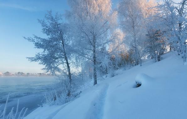Картинка зима, снег, деревья, река, сугробы, тропинка, Дубна, Московская область, Россия река Волга