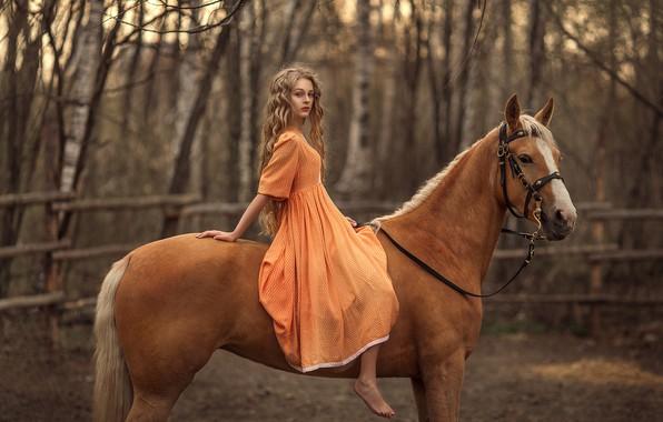 Картинка конь, лошадь, девочка, сидит, длинноволосая, русая