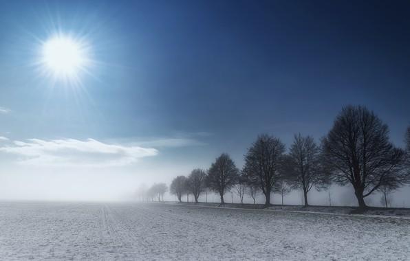 Картинка небо, солнце, облака, снег, туман, земля, Деревья, Zan Foar