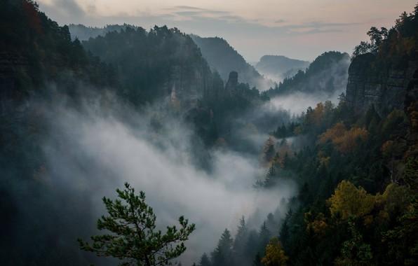 Картинка лес, небо, облака, деревья, закат, горы, природа, скалы, вечер, Швейцария, дымка