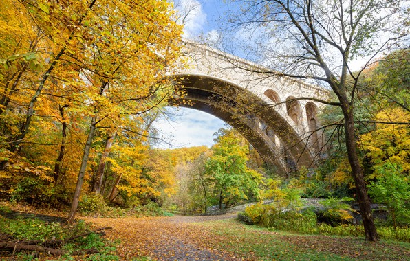Картинка фото, Природа, Осень, Деревья, Листья, Парк, США, Мосты, Wissahickon, Valley Park
