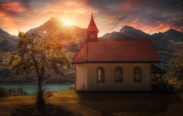 Картинка солнце, дерево, церковь