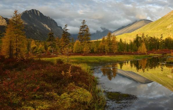Картинка осень, деревья, горы, отражение, берег, растительность, водоем