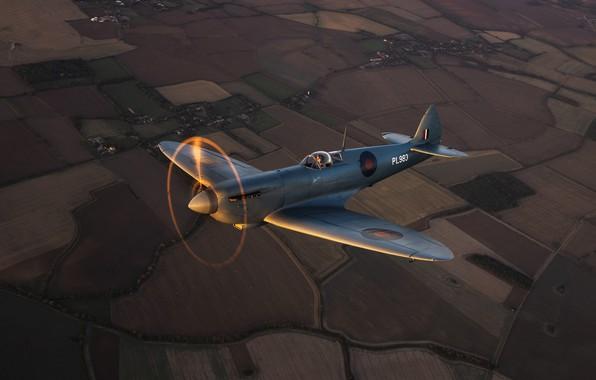 Картинка Винт, Истребитель, Земля, Spitfire, RAF, Вторая Мировая Война, Supermarine Seafire, Spitfire PR.Mk XI