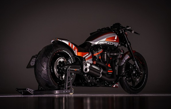 Картинка Harley-Davidson, Custom, Thunderbike