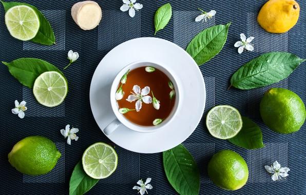 Картинка цветок, лимон, чай, чашка, лайм
