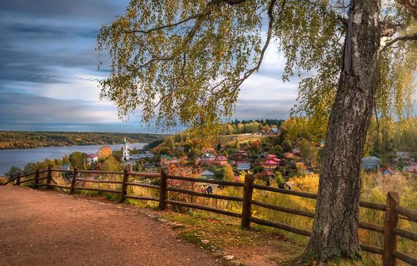 Картинка дорога, осень, пейзаж, природа, город, река, дерево, забор, дома, ограждение, берёза, Волга, Плёс, Андрей Чиж