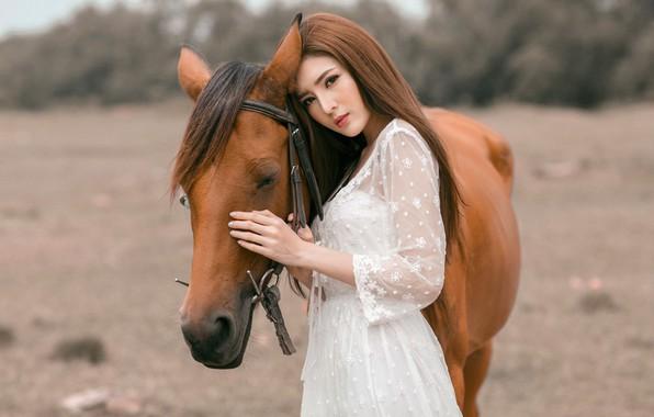 Картинка глаза, взгляд, морда, девушка, природа, лицо, фон, друг, конь, лошадь, портрет, руки, дружба, профиль, шатенка, ...