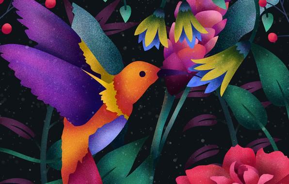 Картинка Art, Wallpaper, Digital, Hummingbird