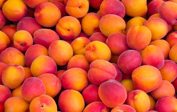Картинка фрукты, нектарины, изобилие