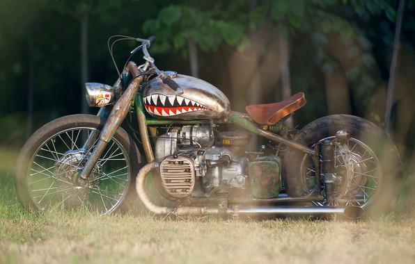 Картинка Custom, Motorbike, M-72, Rat bike