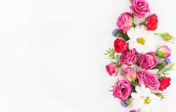 Картинка белый, цветы, фон, розы, букет, flowers