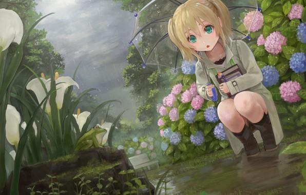 Картинка цветы, дождь, лягушка, зонт, сад, девочка, клумба
