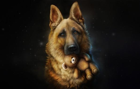 Картинка Собака, Игрушка, Стиль, Овчарка, Dog, Fallout, Арт, Art, Style, Illustration, Друг, Животное, Animal, Toy, Friend, …