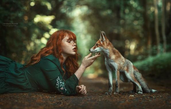 Картинка девушка, природа, лицо, поза, руки, платье, лиса, веснушки, рыжая, рыжеволосая, боке, лисёнок, Marketa Novak, конопатая, …