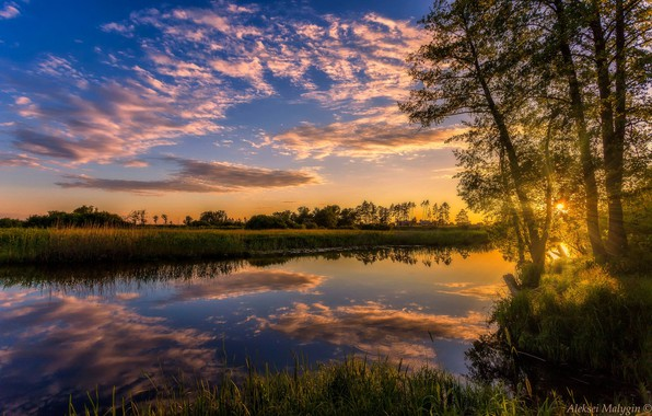 Картинка небо, деревья, закат, отражение, река, Aleksei Malygin