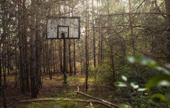 Картинка спорт, щит, баскетбол