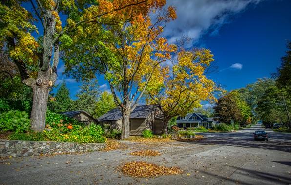 Картинка дорога, осень, небо, листья, солнце, облака, деревья, машины, улица, дома, США, жёлтые, Michigan, Northport