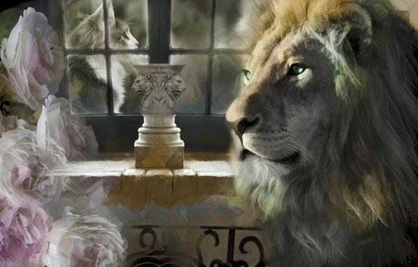 Картинка кот, коллаж, розы, лев, окно