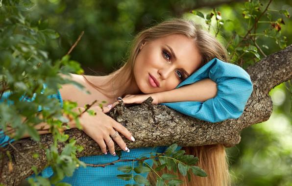 Картинка зелень, взгляд, листья, девушка, солнце, ветки, природа, дерево, портрет, макияж, платье, прическа, блондинка, красивая, позирует, …