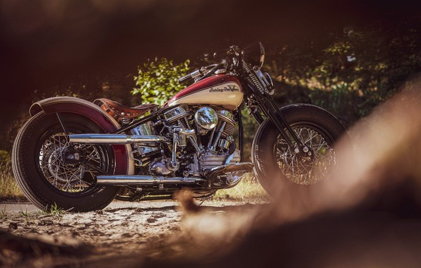 Картинка Custom, Motorcycle, Bobber, Thunderbike, By Thunderbike, Uncle Pan