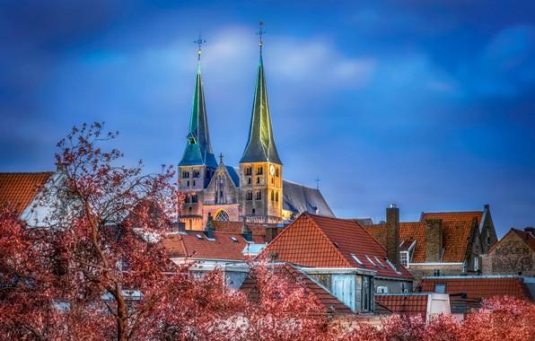 Картинка церковь, Нидерланды, Bergkerk, Saint Nicholas Church