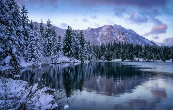 Картинка зима, лес, снег, пейзаж, горы, природа, озеро, красота, ели