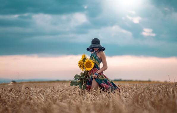 Картинка поле, небо, девушка, подсолнухи, поза, настроение, шляпа, платье