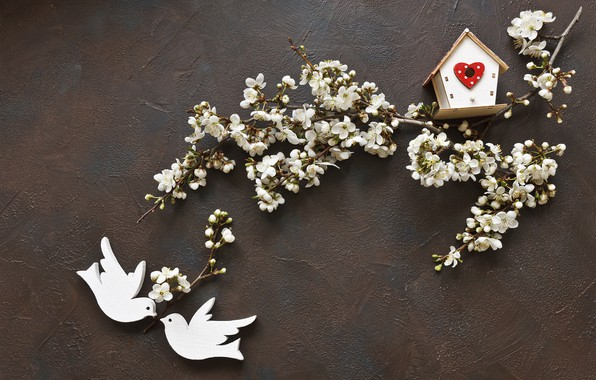 Картинка цветы, весна, love, white, белые, wood, blossom, flowers, romantic, spring