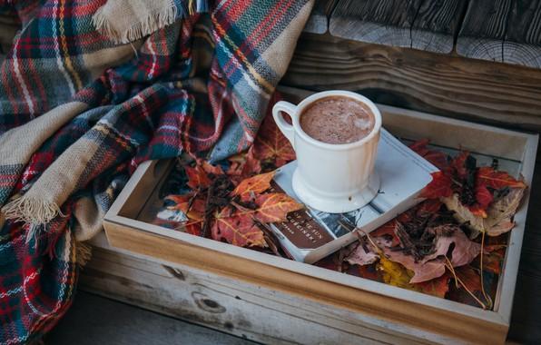 Картинка листья, чашка, плед, очень, какао