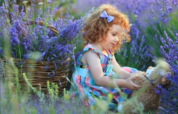 Картинка цветы, корзина, игрушка, Девочка
