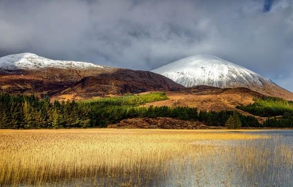 Картинка осень, лес, небо, трава, облака, свет, снег, горы, озеро, пруд, холмы, берег, растительность, вершины, болото, ...
