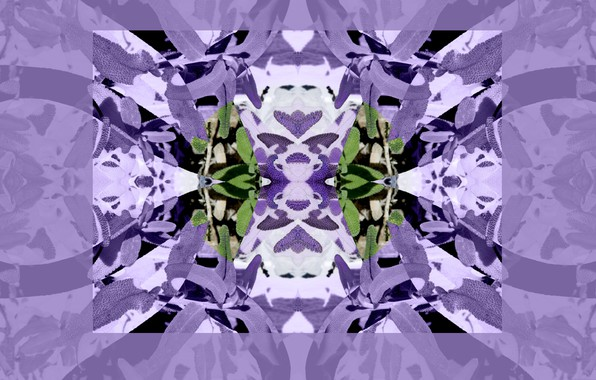 Картинка отражение, узор, симметрия