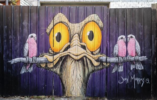 Картинка Graffiti, Melbourne, Street Art
