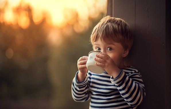 Картинка взгляд, мальчик, малыш, кружка, ребёнок, тельняшка, боке, Марианна Смолина