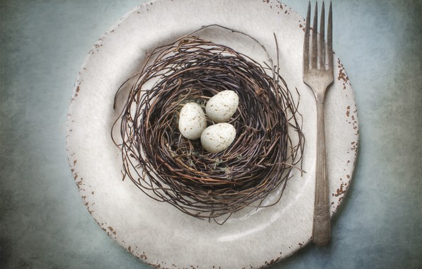 Картинка тарелка, гнездо, вилка, яица