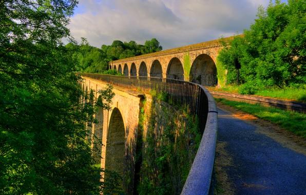 Фото обои зелень, солнце, деревья, мост, Англия, строение, Shropshire, Chirk Bank