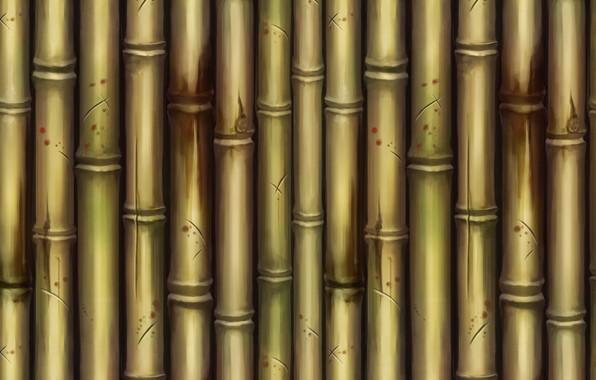 Картинка текстура, бамбук, арт, Bamboo, Dan Khanh Tran