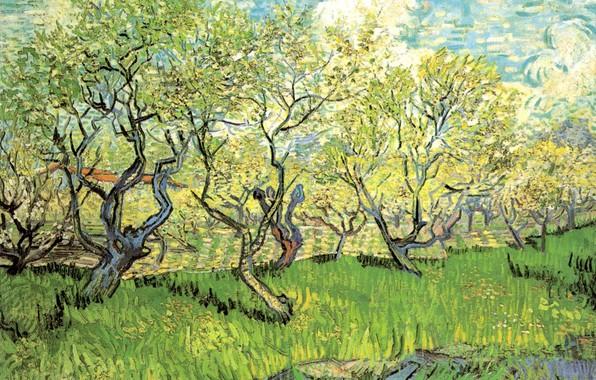 Картинка трава, облака, деревья, Vincent van Gogh, in Blossom 2, Orchard