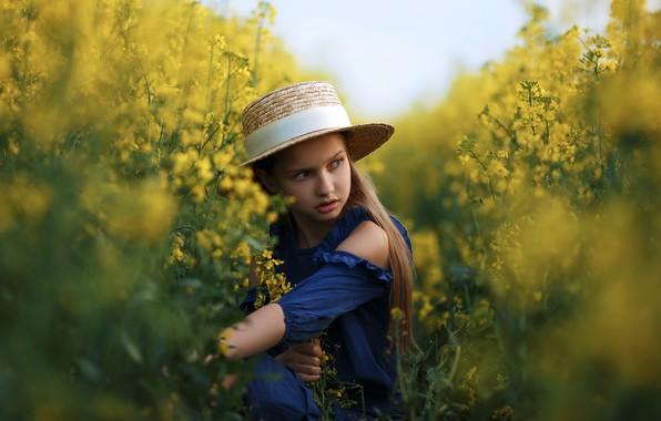 Картинка поле, лето, взгляд, природа, шляпа, платье, девочка, травы, ребёнок, Алексей Баталов