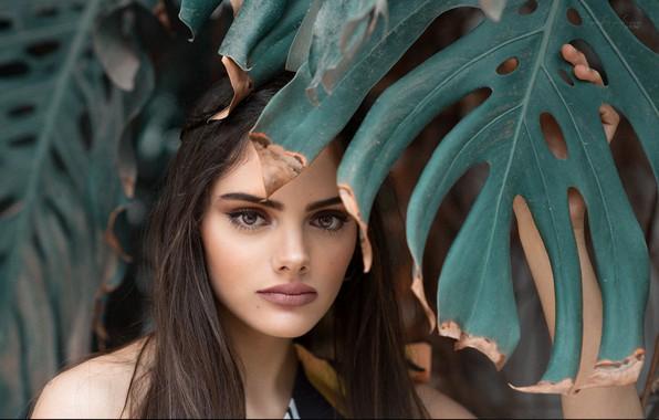 Картинка девушка, портрет, Rosa Ortega