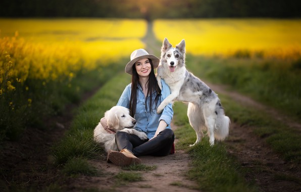 Картинка дорога, собаки, девушка, рапс
