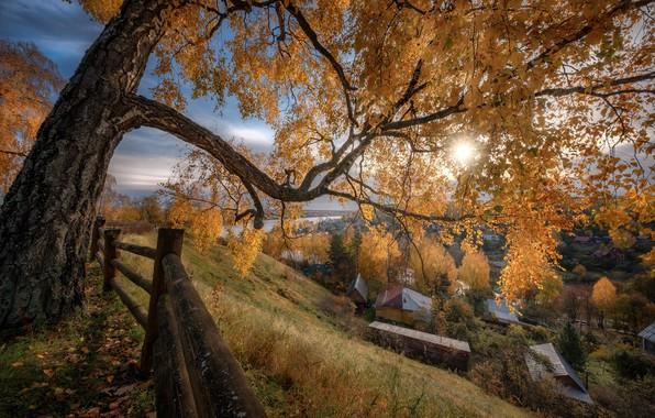 Картинка осень, солнце, лучи, пейзаж, природа, город, дерево, дома, склон, ограждение, Плёс, Андрей Чиж